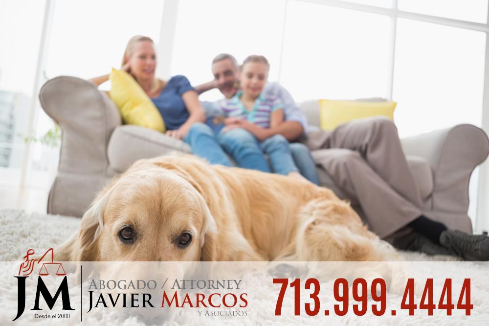 Reclamo mordida de perro | Abogado Javier Marcos 713.999.4444