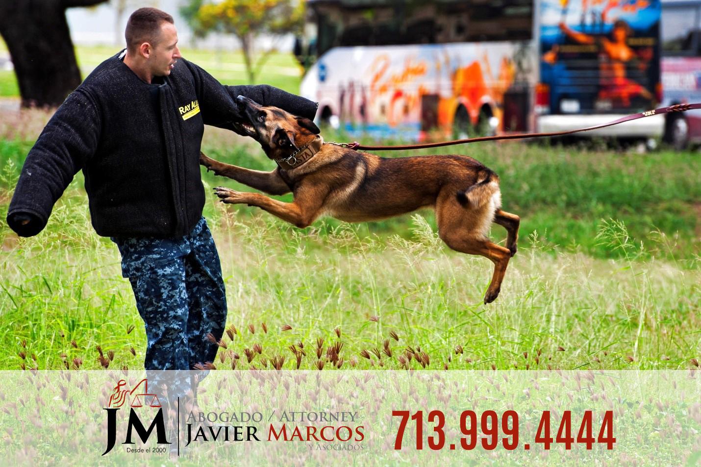 Ataque de perro   Abogado Javier Marcos   713.999.4444